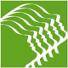 Logo dell'associazione.